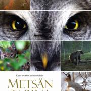 Чудесный лес / Tale of a Forest / Wunder des Waldes / Metsän tarina