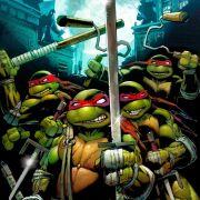 Мутанты черепашки-ниндзя: Бой на смерть / Teenage Mutant Ninja Turtles - Don vs Raph все серии