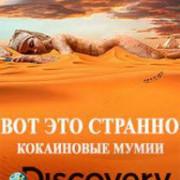 Discovery. Вот это странно (Кокаиновые мумии) / Weird or What? Cocaine mummies