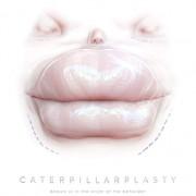 Папиллиопластика / Caterpillarplasty