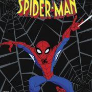 Грандиозный Человек-Паук / The Spectacular Spider-Man все серии