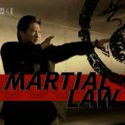 Китайский городовой / Martial Law все серии