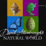 Наедине с природой / Wildlife on ONE все серии
