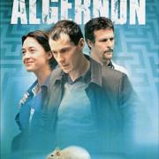 Цветы для Алджернона / Des Fleurs Pour Algernon