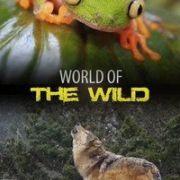 Мир дикой природы /  World of the Wild все серии