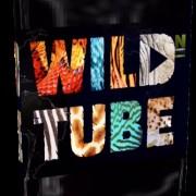 Природа в кадре / Wild Tube все серии