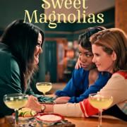 Милые магнолии / Sweet Magnolias все серии