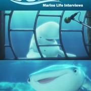 В поисках Дори: Интервью о морской жизни / Finding Dory: Marine Life Interviews