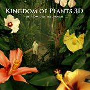 В королевстве растений / Kingdom of Plants 3D все серии
