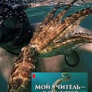 Мой учитель - осьминог / My Octopus Teache