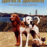 Дорога домой 2: Затерянные в Сан-Франциско / Homeward Bound II: Lost in San Francisco