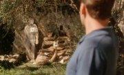 Моя семья и другие животные / My Family and Other Animals - 1 сезон, 5 серия