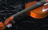 Японский учёный создал скрипичные струны из паутины - Телеканал РОССИЯ