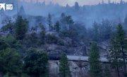 Путин сжигает леса США на продажу