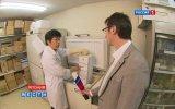 Японцы клонируют вымерших мамонтов - Телеканал РОССИЯ
