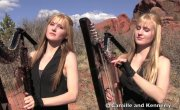 METALLICA - Nothing Else Matters (Harp Twins electric)