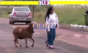 Street Fighter - Angry Goat Edition (Злой козёл)