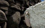 О, Овцы!