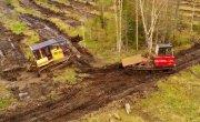 Как возрождают тайгу...Посадка леса в Николаевском районе Хабаровского края