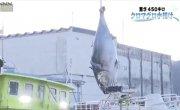 В Японии с аукциона продали самого крупного тунца в истории